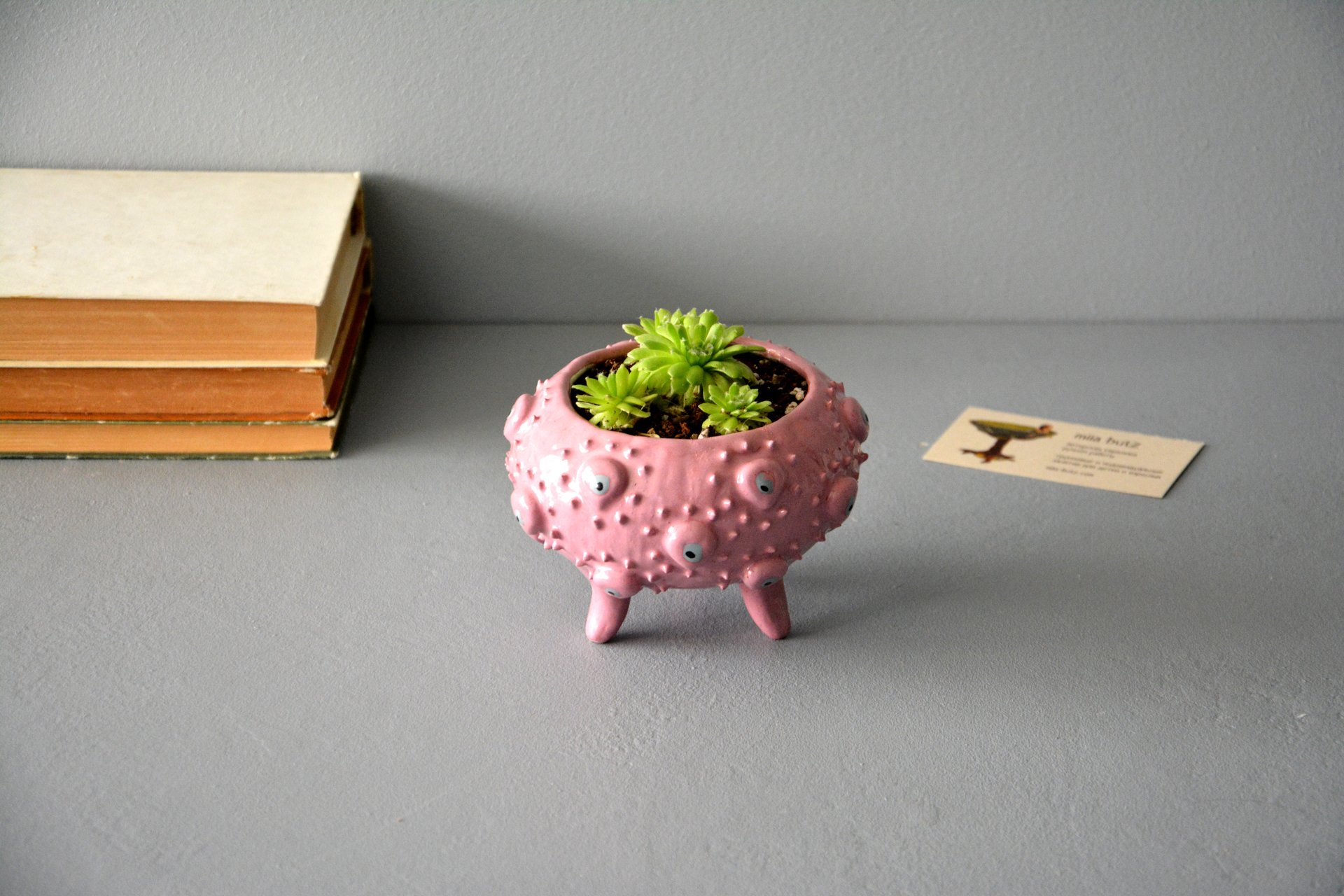 Pink ceramic flower pots for succulents, height - 8,5 cm, diameter (internal) - 8 cm, photo 3 of 4.