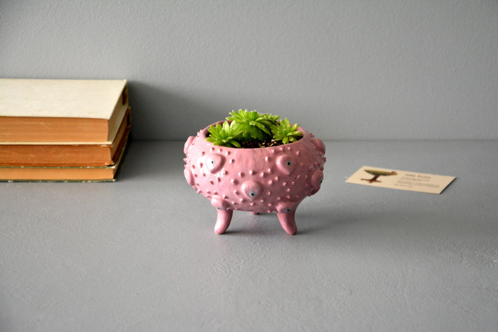 Pink ceramic flower pots for succulents, height - 8,5 cm, diameter (internal) - 8 cm, photo 1 of 4.
