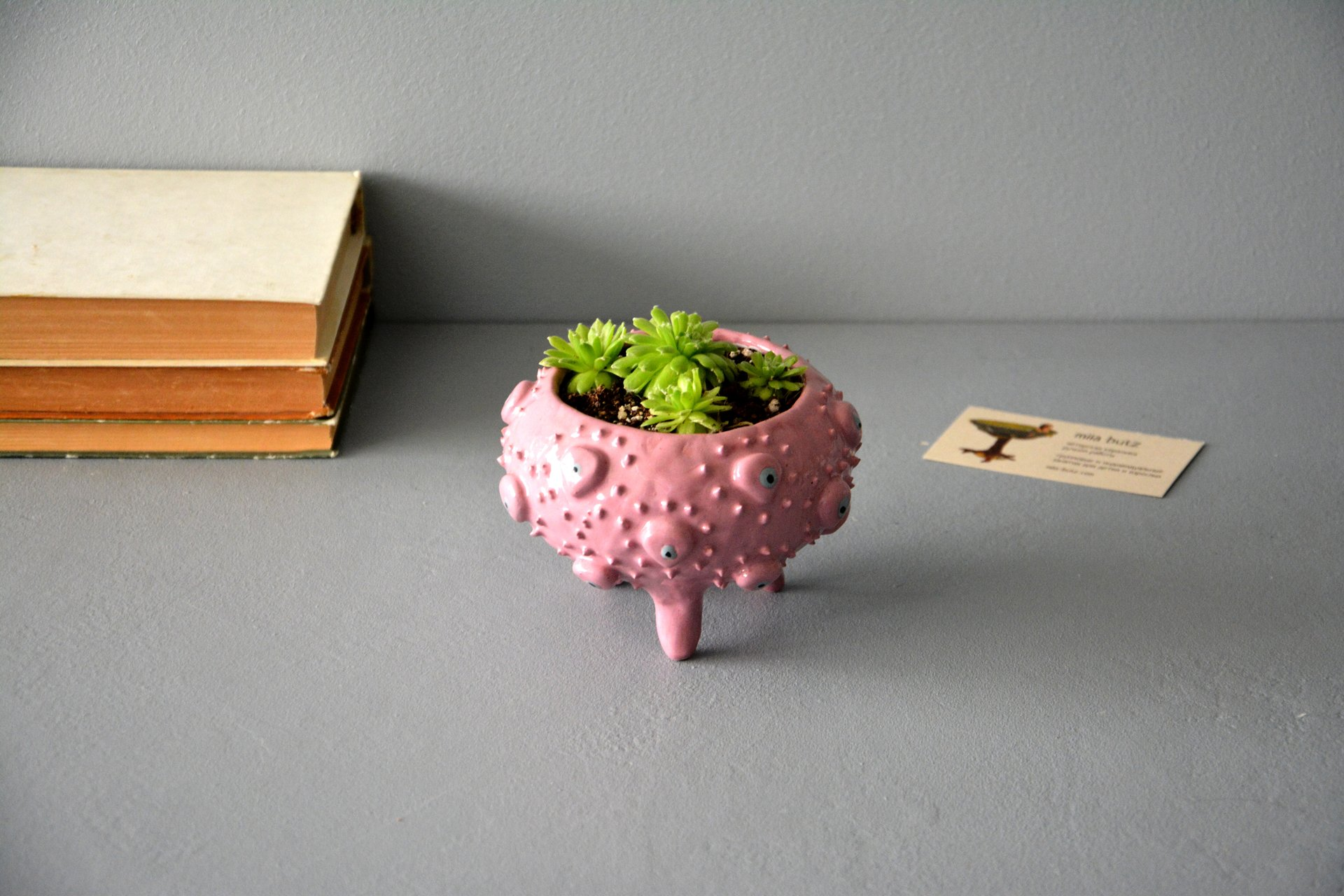 Pink ceramic flower pots for succulents, height - 8,5 cm, diameter (internal) - 8 cm, photo 4 of 4.